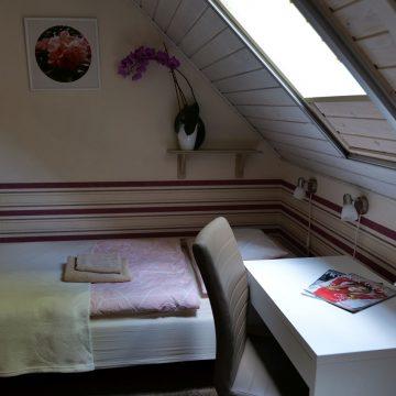 5. twin room